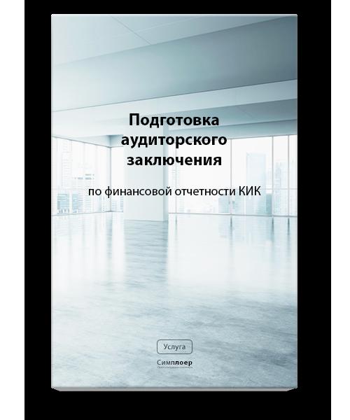 kik-audit
